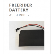 Batterie de rechange KUBERG Freerider 48V 20 AH